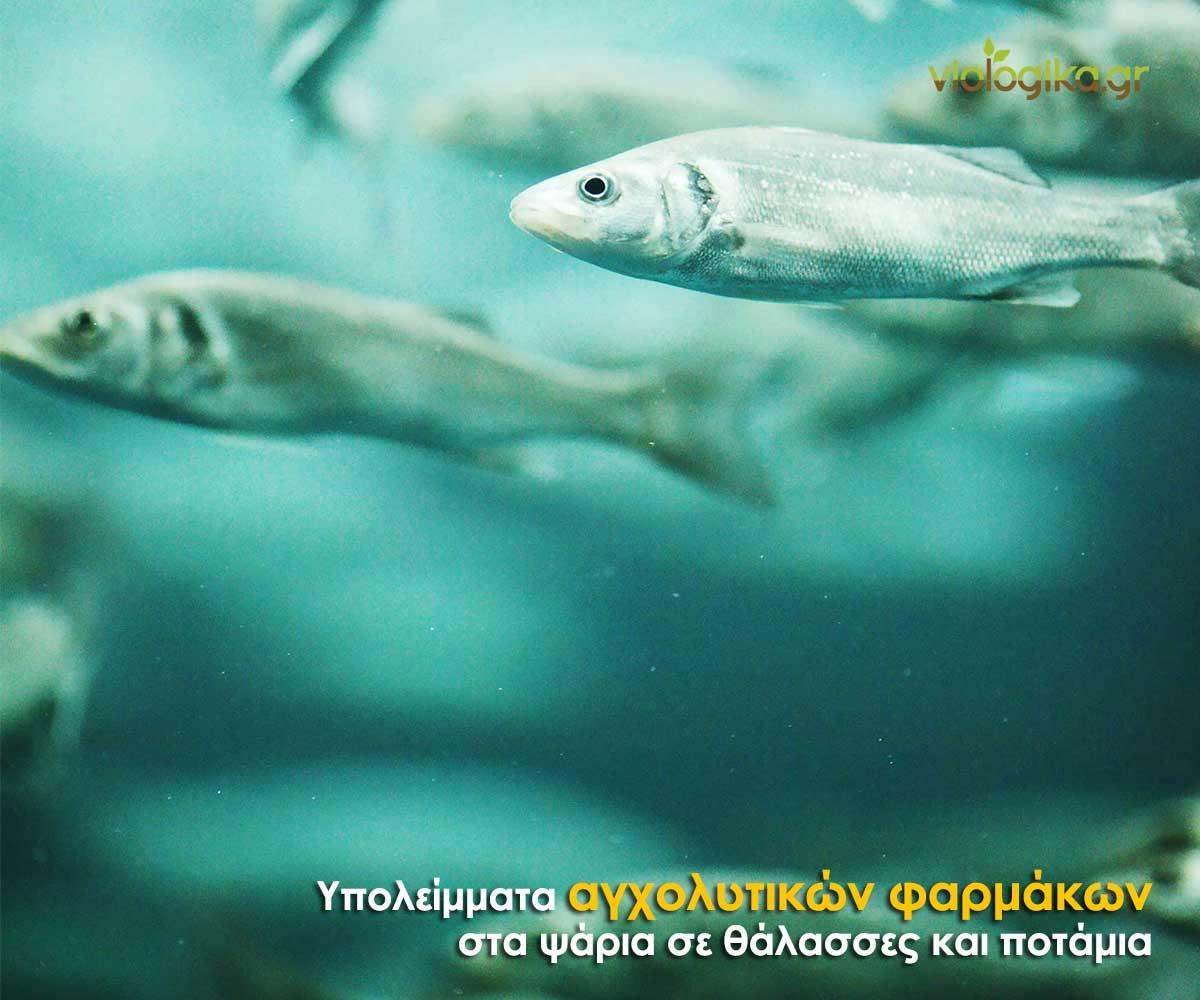 Υπολείμματα αγχολυτικών φαρμάκων στα ψάρια