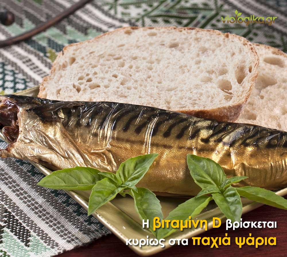 Η βιταμίνη D βρίσκεται κυρίως στα παχιά ψάρια