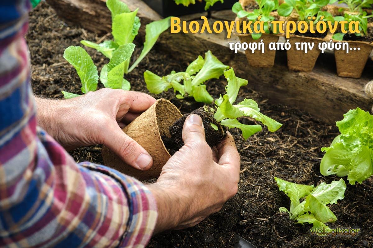 Βιολογικα προιοντα, τροφή από την φύση