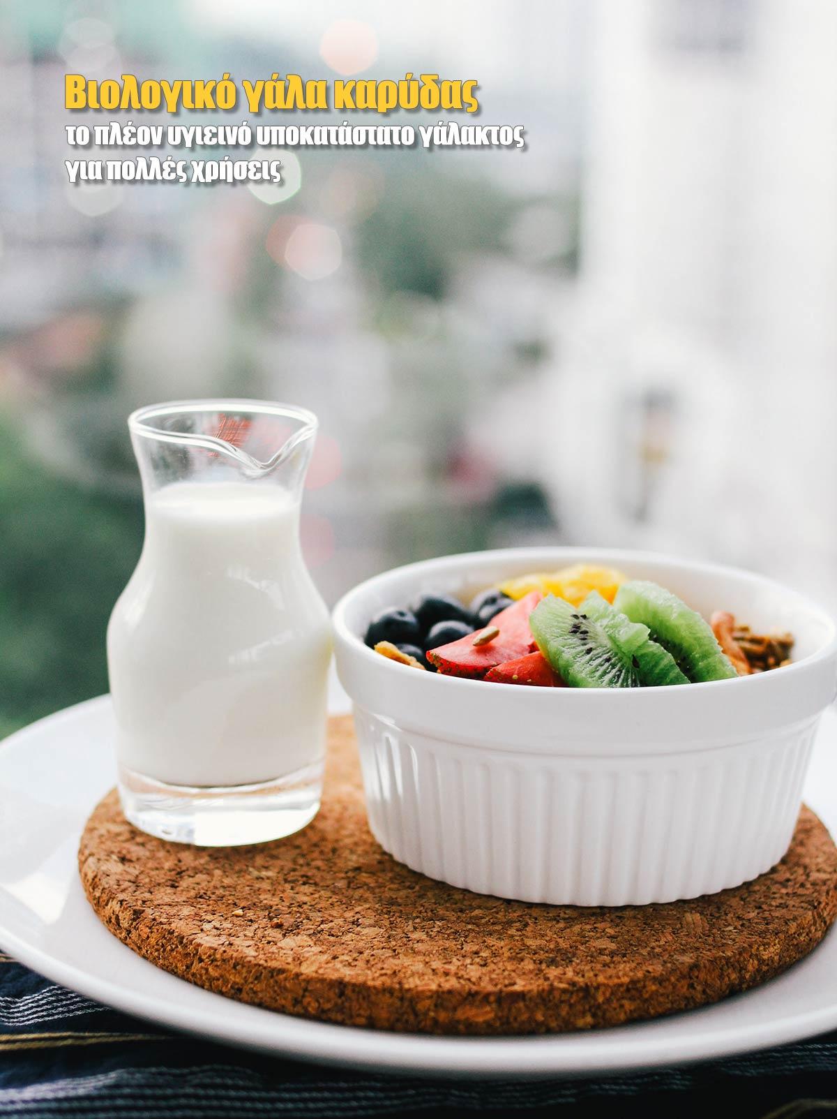 Συνταγές με βιολογικό γάλα καρύδας