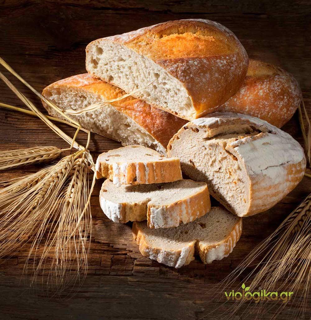 Βιολογικό ψωμί