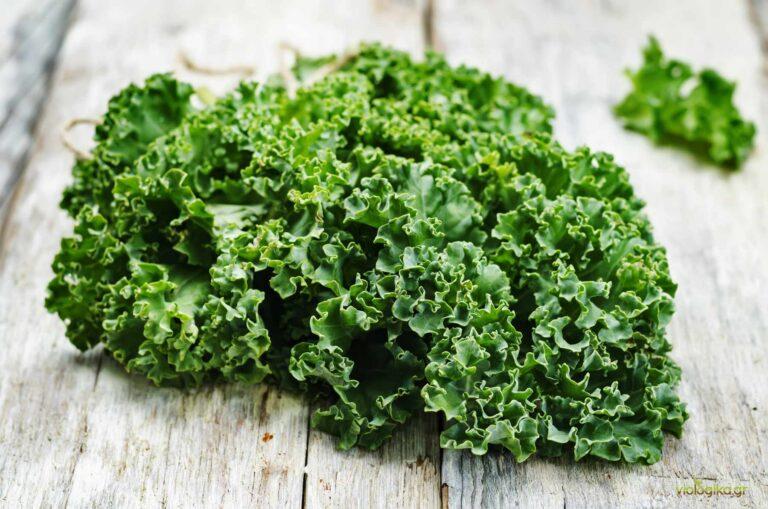 Βιολογικό Λάχανο Μιλάνου (Kale)