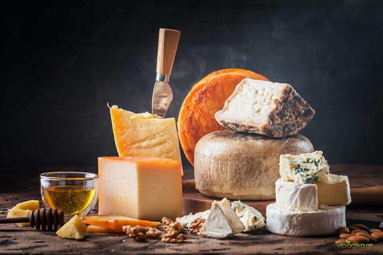 Βιολογικό τυρί, ποικιλία βιολογικών τυριών